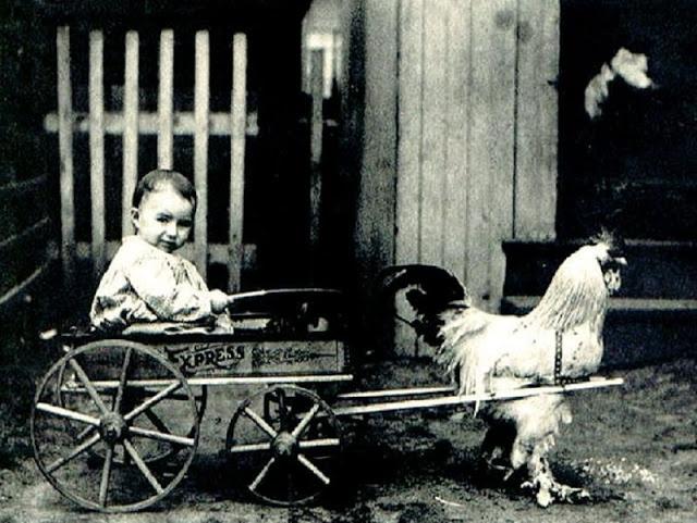 Very Strange Vintage Photos (20 pics)