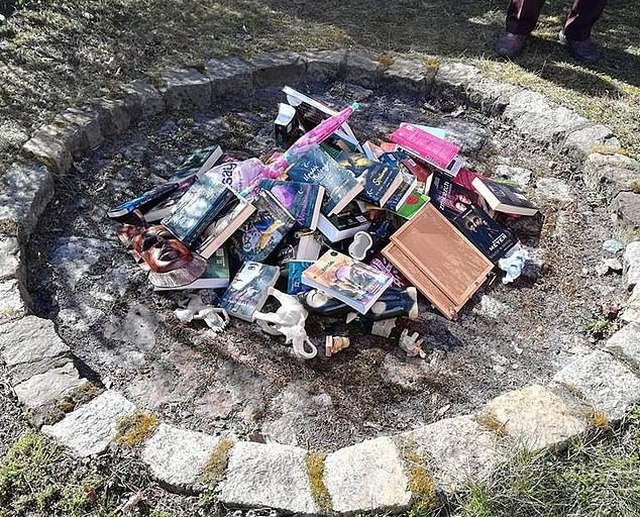 Catholic Priests Burn 'Sacrilegious' Harry Potter Books And Twilight Novels In Poland (6 pics)