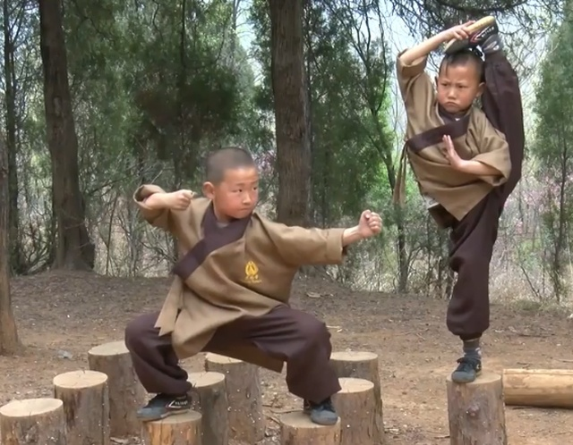 Six-year-old Shaolin Warrior Monks (10 pics)