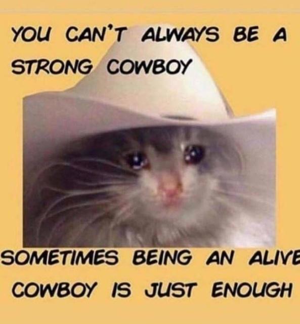 Depression Memes (27 pics)