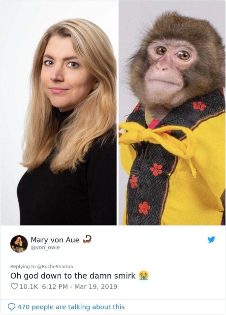 Monkey Looks Like A Journalist (27 pics)