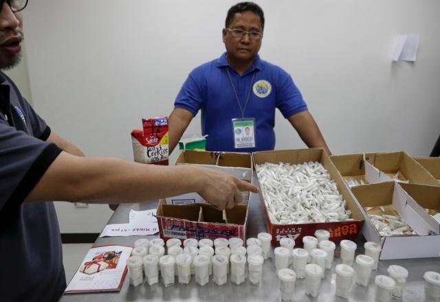 Philippines Seizes 757 Tarantulas From Poland (7 pics)