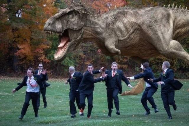 Funny Wedding Photos (17 pics)