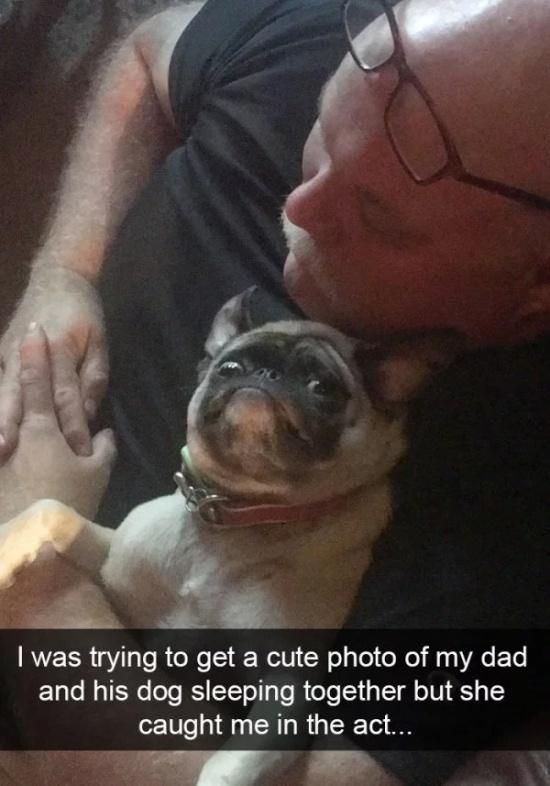 Dog Snapchats (30 pics)