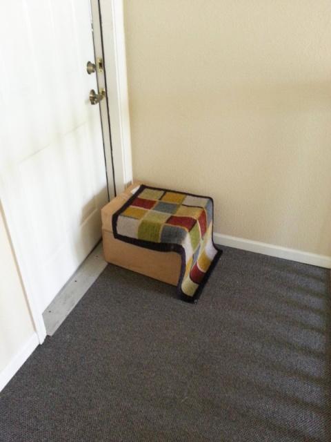 Failed Hidden Under The Doormat Deliveries (20 pics)