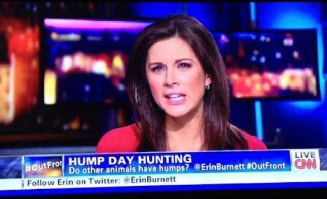 They Put Everything On Television These Days… (25 pics)