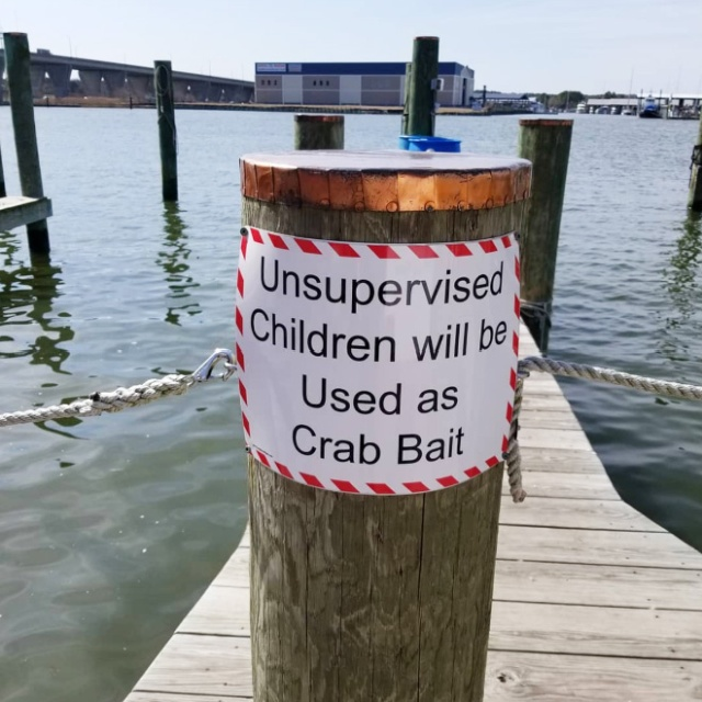 "Funny ""Unattended Children"" Warning Signs (19 pics)"