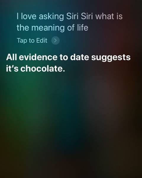 You Ask Siri Stupid Questions, You Get Stupid Answers (30 pics)