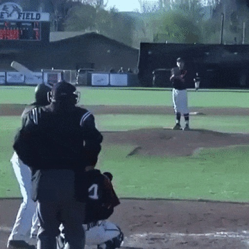 I Wasn't Expecting This (15 gifs)