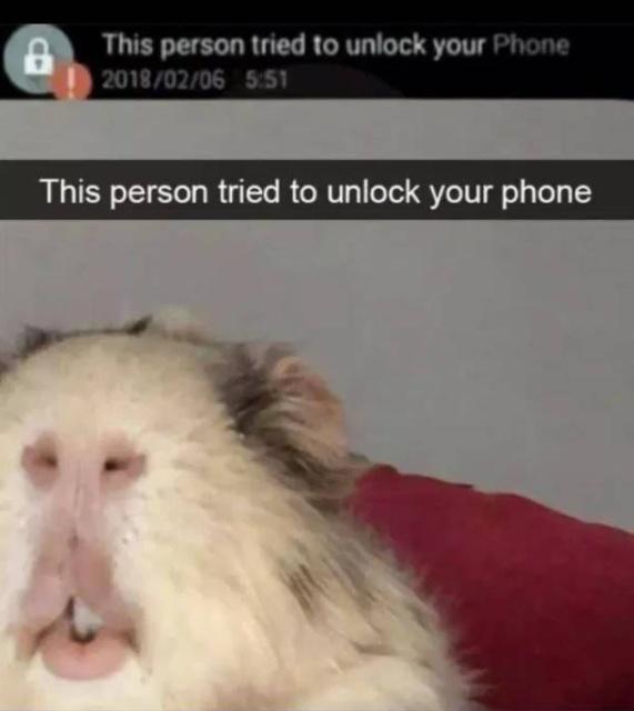 Very Funny Memes (27 pics)