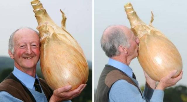 Giant Vegetables (15 pics)