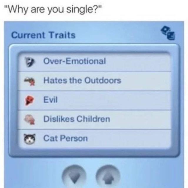 Dating Memes (30 pics)
