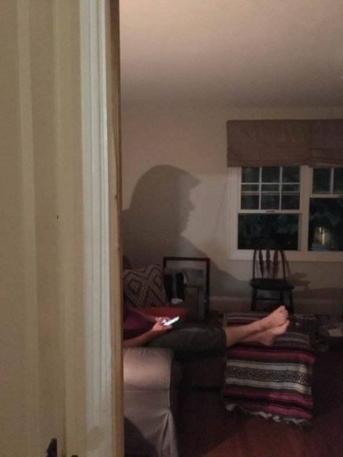 Something Is Going On With These Silhouettes (20 pics)