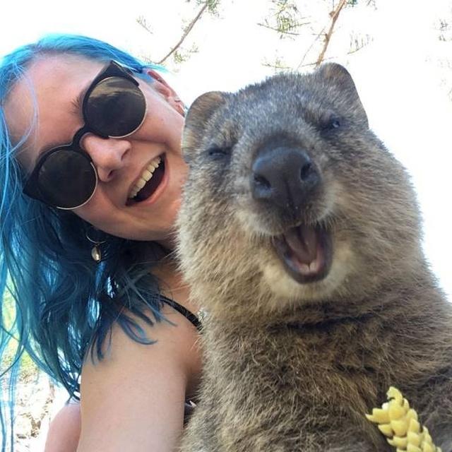 Only In Australia (38 pics)
