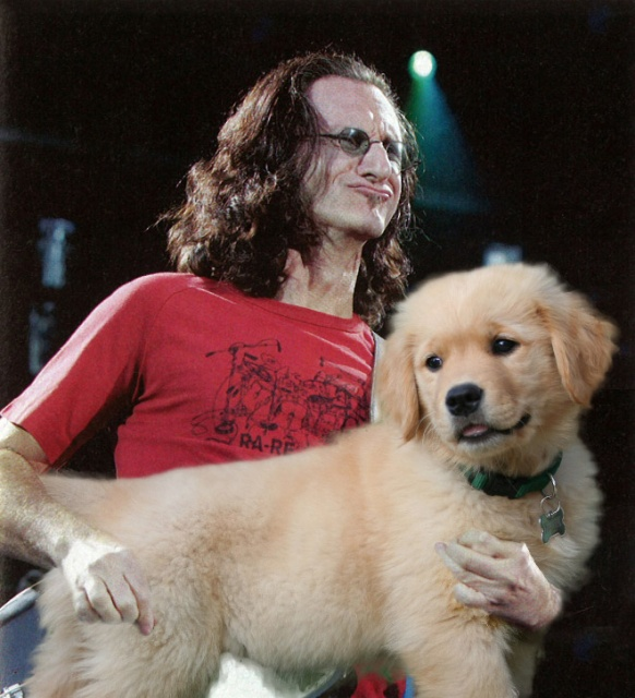 Guitars Replaced With Dogs (20 pics)