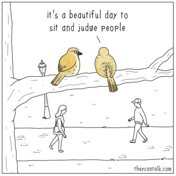 Artist Imagines What's Going On Inside Birds' Heads (26 pics)