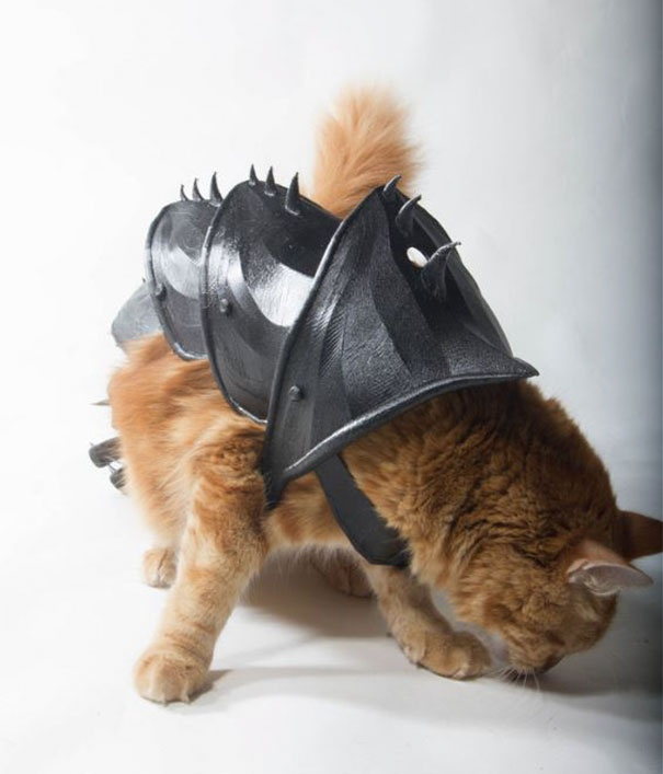 3D Printed Armor For A Cat (9 pics)
