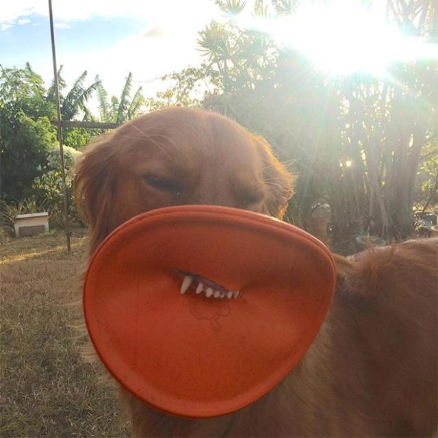 Frisbee Lips (17 pics)