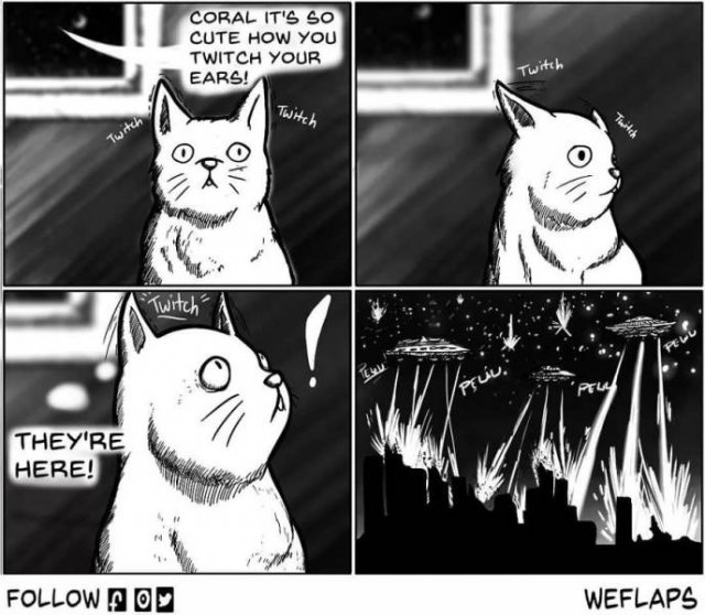 Funny Comics About Living With A Cat (31 pics)