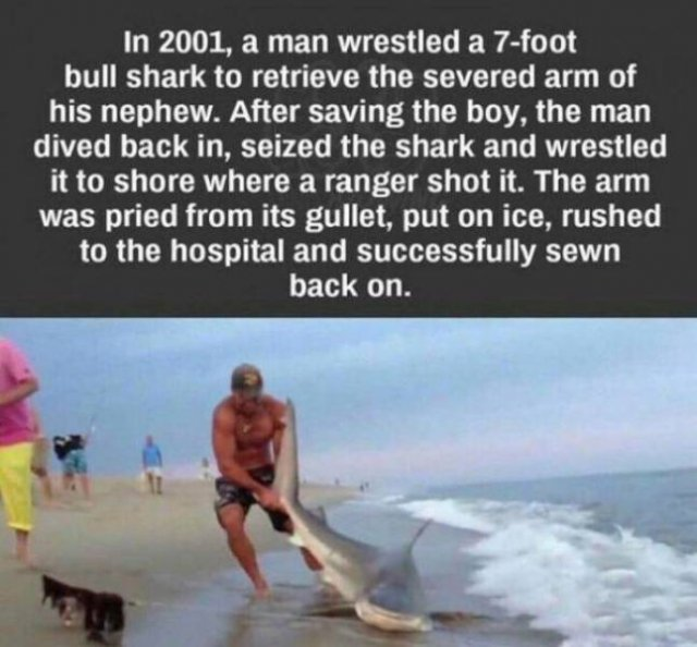This Is Interesting And Amazing (25 pics)