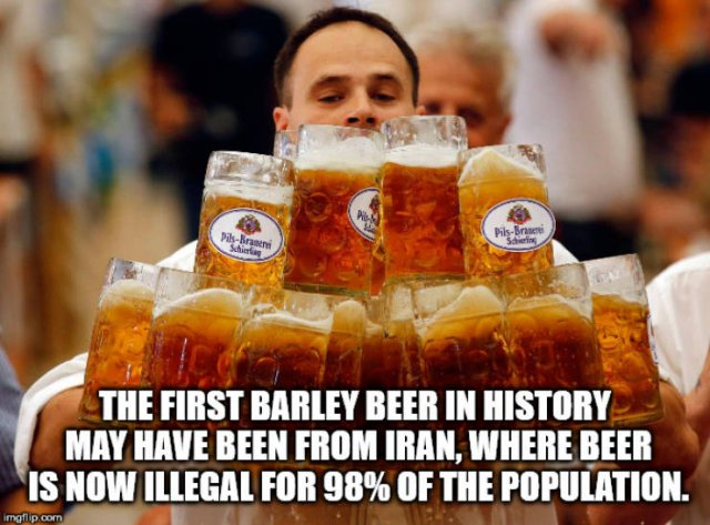 Interesting Facts (40 pics)