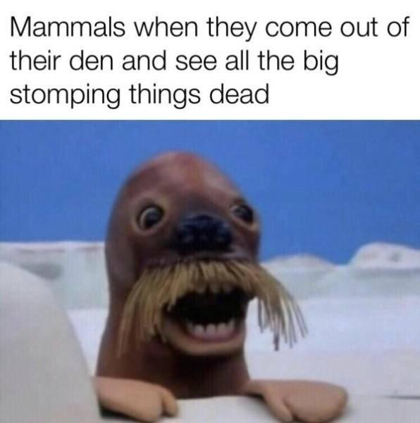 Prehistoric Memes (32 pics)