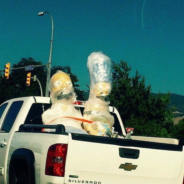 You Don't See Something Like This Every Day (31 pics)