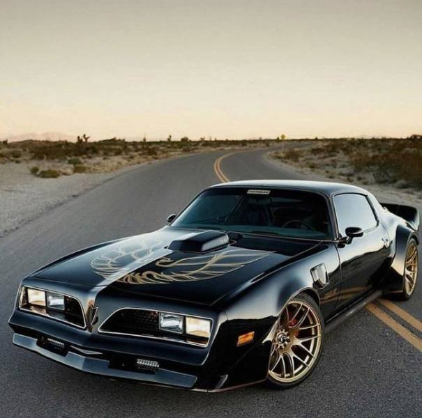 Muscle Cars (48 pics)