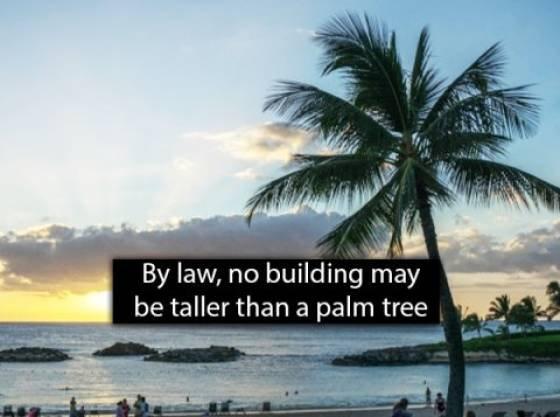Hawaii Facts (25 pics)