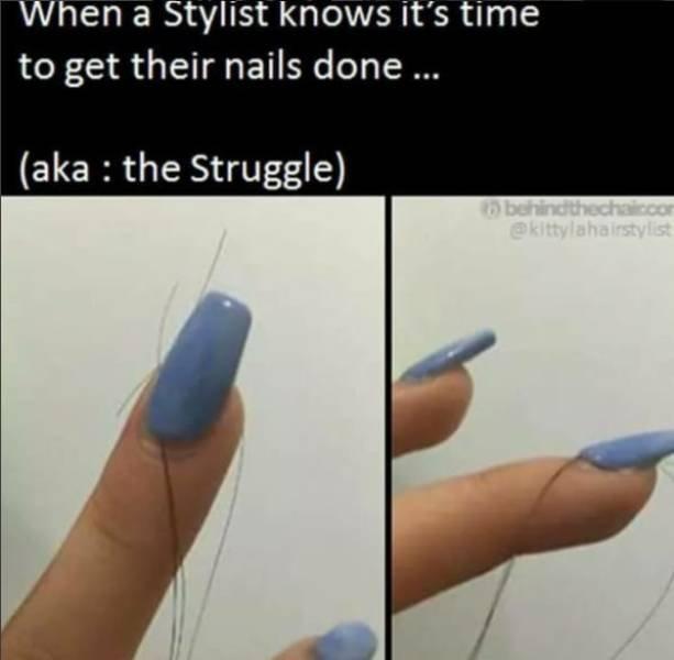 Hairdresser Memes (59 pics)
