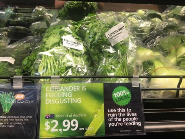 People Hate Coriander (50 pics)