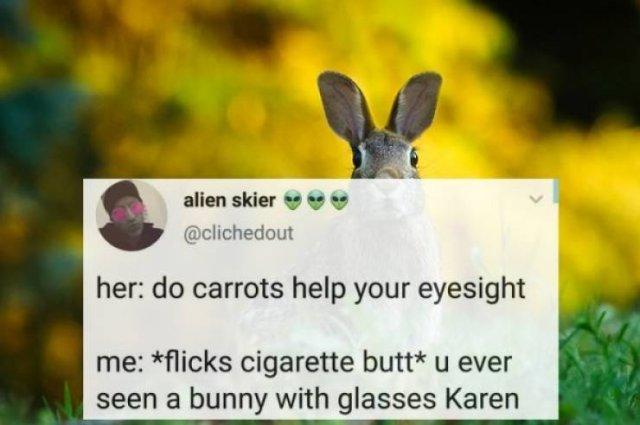 Best Tweets (27 pics)