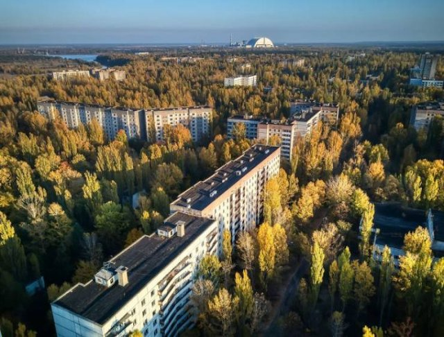 Nature Takes Chernobyl Back (65 pics)