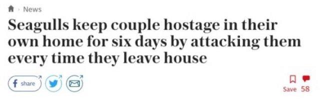 Unusual Headlines (31 pics)