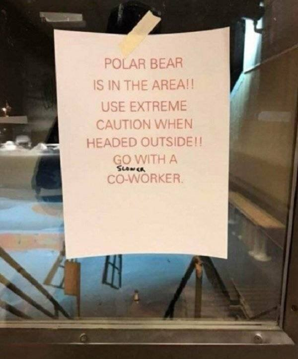 Welcome To Canada (34 pics)