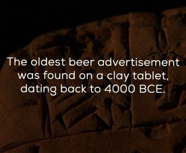 Beer Facts (24 pics)