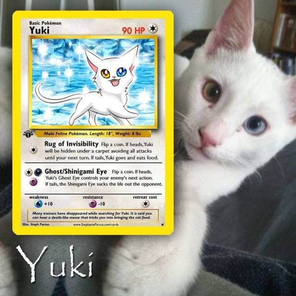 This Artist Can Turn Your Pet Into A Pokemon (56 pics)