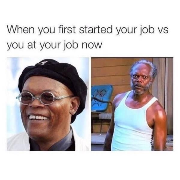 Work Memes (54 pics)