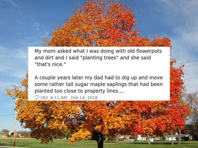 Tell A Story From Your Childhood That Says A Lot About You (31 pics)