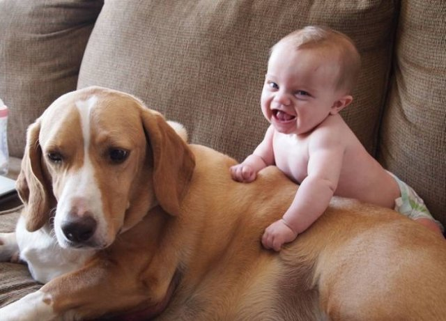 Kids And Animals (20 pics)