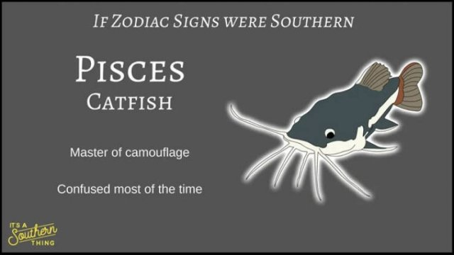 If Zodiac Signs Were Southern (14 pics)