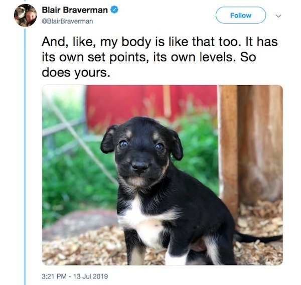 Sled Dogs Have A Lot To Teach About Body Positivity (19 pics)