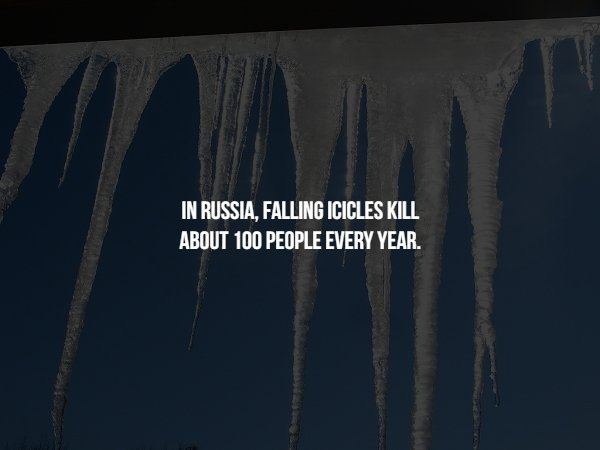 Creepy Facts (15 pics)