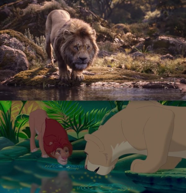 Let's Compare The New Lion King To The Original (24 pics)