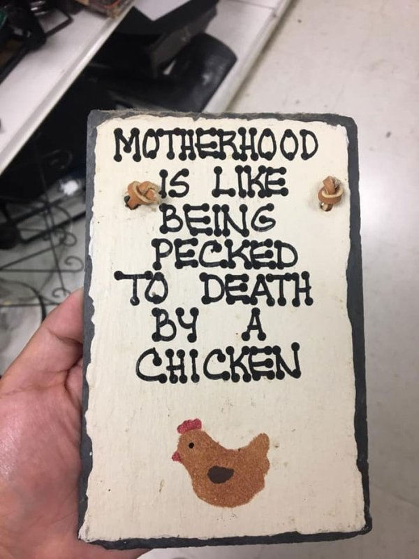 Found At Thrift Shops (35 pics)