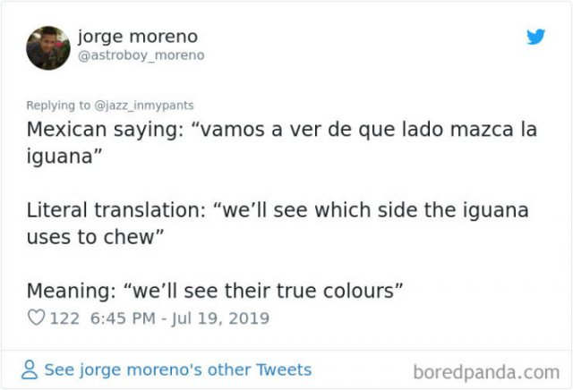 Interesting Non-English Phrases (45 pics)