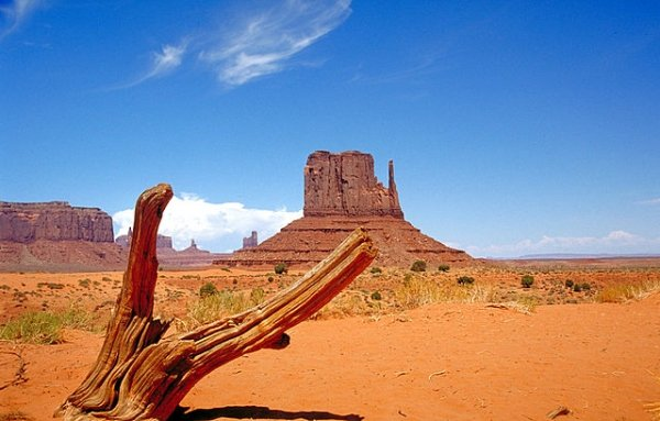 The Most Fun States In The USA. (21 pics)