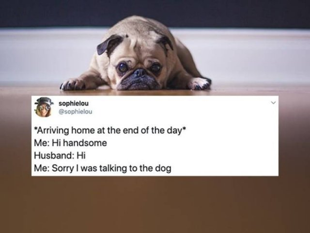 Tweets About Married Life (28 pics)