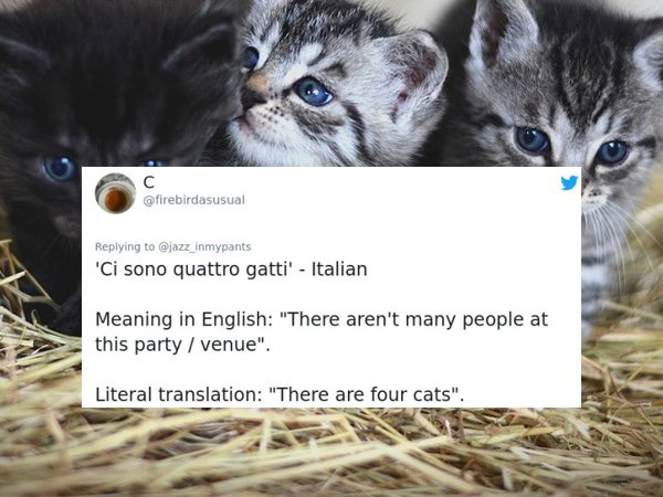 Weird Phrases Translated To English From Other Languages (26 pics)