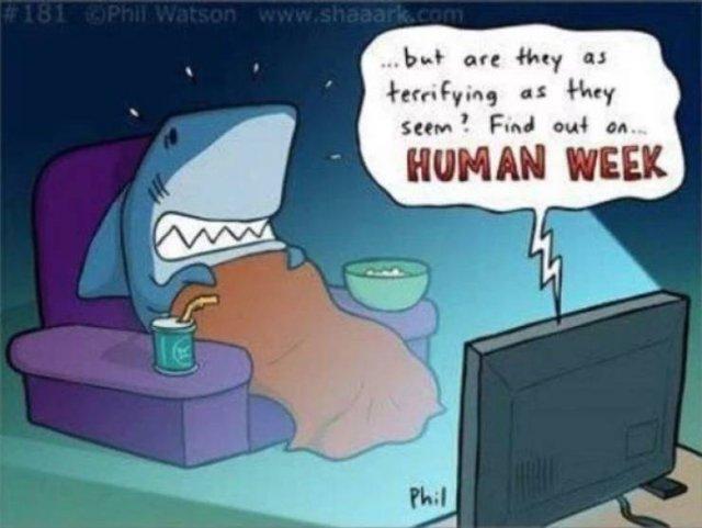 Shark Week Memes (29 pics)